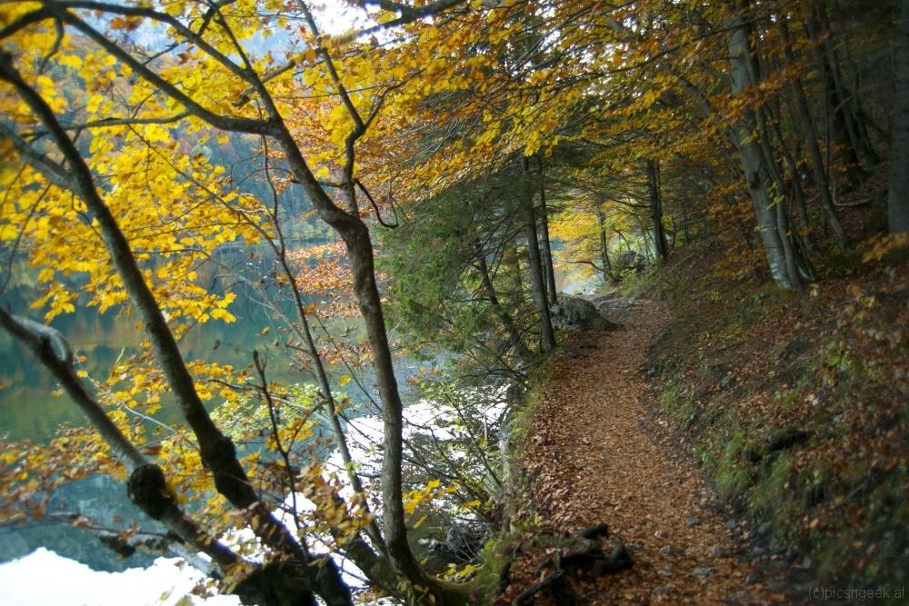 Path next to Leopoldsteinersee